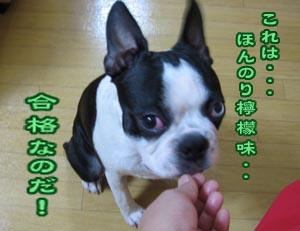 06_10_06_03.jpg