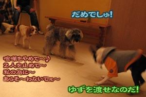 06_10_08_01.jpg