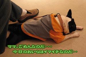 06_10_08_09.jpg