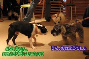 06_10_17_02.jpg