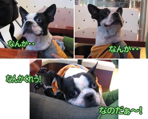 06_11_21_16.jpg