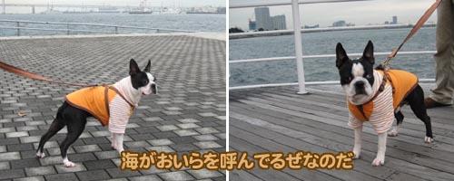 06_11_28_07.jpg