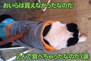 06_11_30_19.jpg