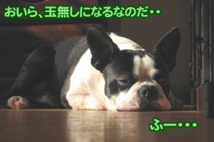 06_12_08_12.jpg
