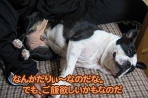 06_12_11_05.jpg