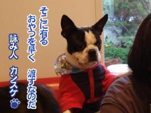 07_01_31_16.jpg