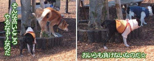 07_02_11_11.jpg