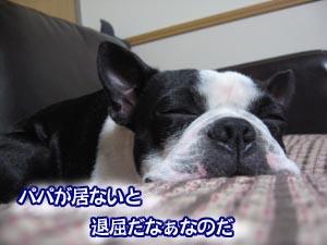 07_03_03_01.jpg