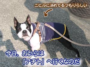07_03_05_01.jpg