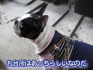 07_03_05_03.jpg
