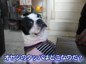 07_03_05_06.jpg