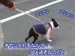07_03_05_10.jpg