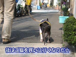 07_03_05_15.jpg