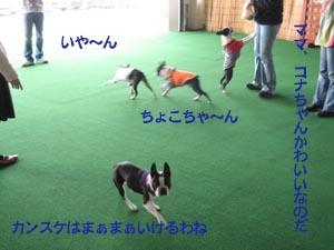 07_03_11_05.jpg