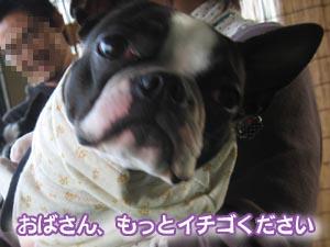 07_03_11_15.jpg