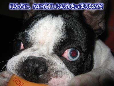 07_03_22_04.jpg