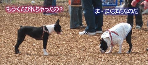 07_04_09_03.jpg