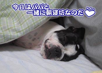 07_04_26_01.jpg