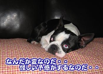 07_04_26_02.jpg