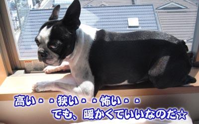 07_05_03_01.jpg