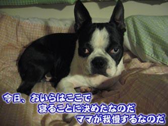 07_05_03_07.jpg