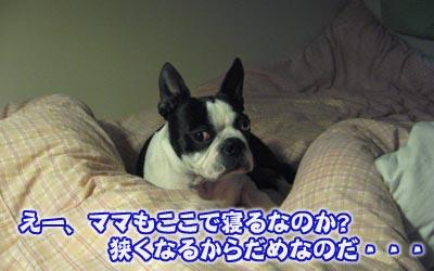 07_05_03_08.jpg