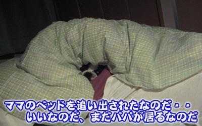 07_05_03_09.jpg