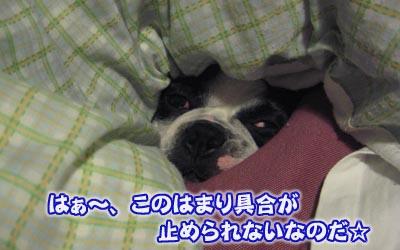 07_05_03_10.jpg