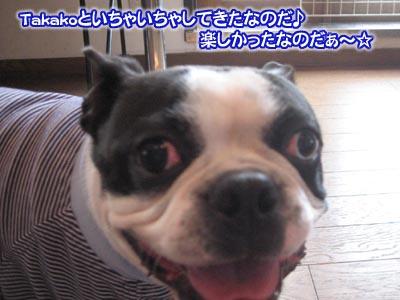 07_05_10_03.jpg