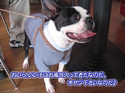 07_05_10_04.jpg