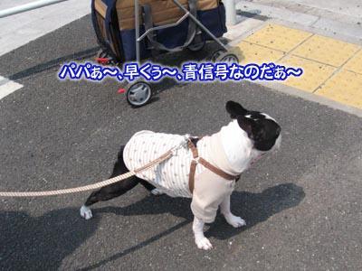 07_05_10_07.jpg