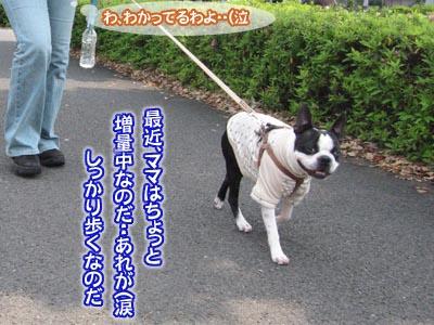07_05_10_08.jpg