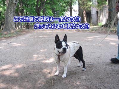 07_05_10_09.jpg