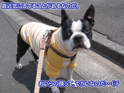 07_05_10_10.jpg