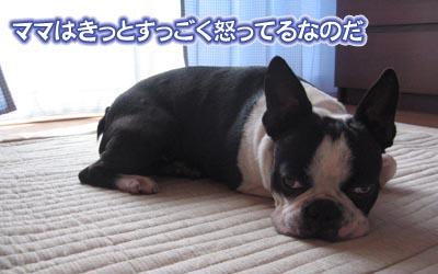 07_05_25_04.jpg