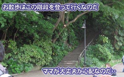 07_05_30_02.jpg