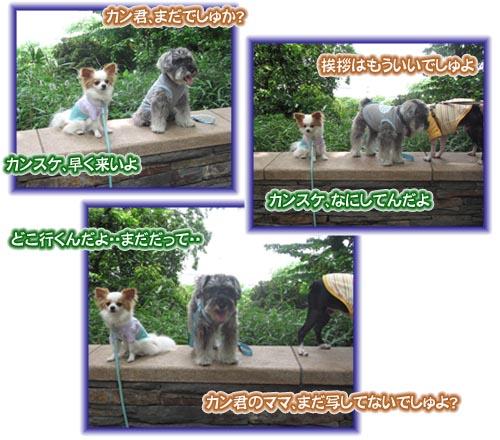 07_05_30_10.jpg