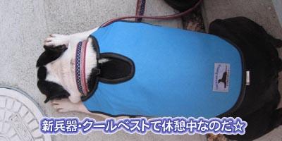 07_06_25_07.jpg