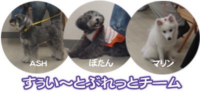 07_07_03_04.jpg