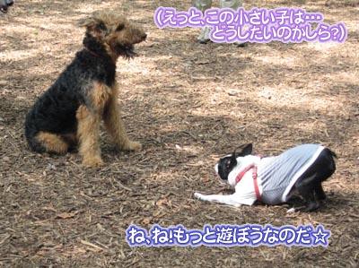 07_07_26_07.jpg