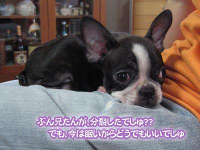 07_08_02_02.jpg