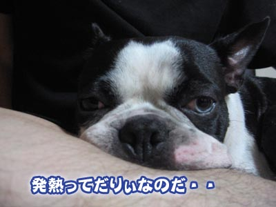 07_08_15_06.jpg