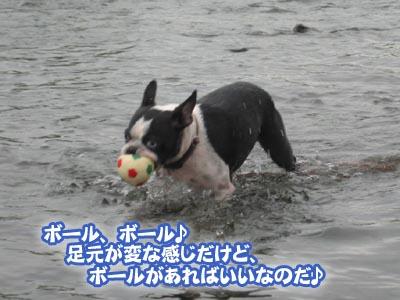 07_08_20_03.jpg