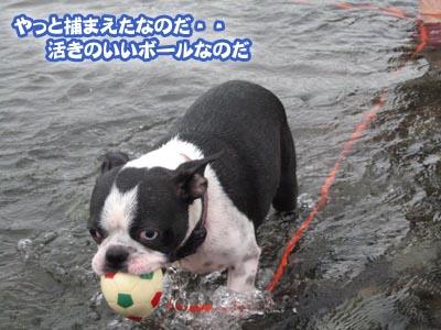 07_08_20_05.jpg