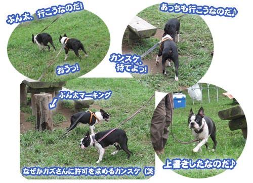 07_08_20_15.jpg