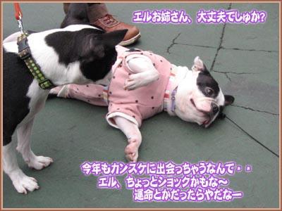 07_09_05_09.jpg