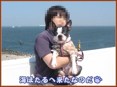 07_09_12_01.jpg