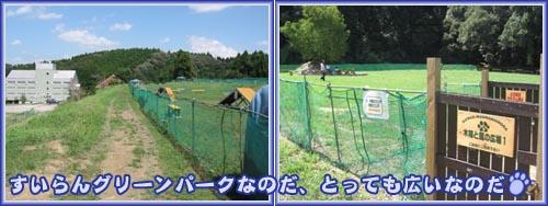 07_09_12_03.jpg