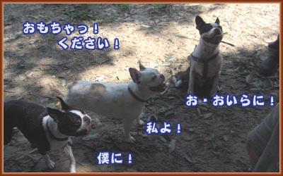 07_09_12_05.jpg