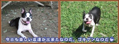 07_09_12_10.jpg